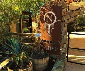 Suites Nativo - Beautiful Vineyard & Valley View