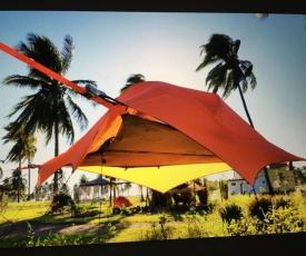 Flyin Tent @ Ecoaldea Sembrando Vida