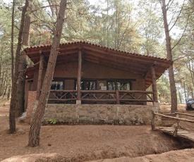 Cabañas Tapalpa Sierra del Tecuan, Cabaña Venado