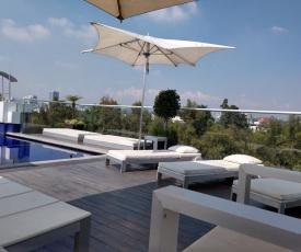 Condesa Park Best Location Pool