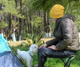Camping Rancho La Joya